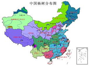 中国杨树分布图